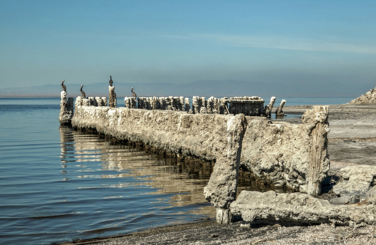 Bombay Beach, Pilings and Pelicans